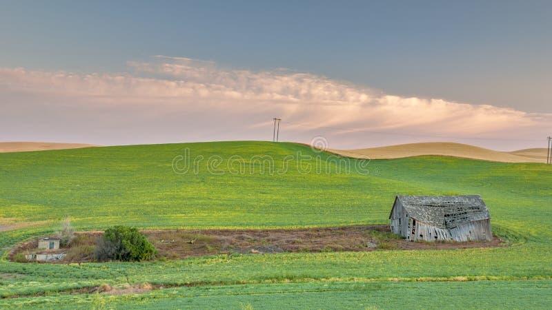 Lantgårdfältet plogade runt om en ladugård på soluppgång arkivfoton