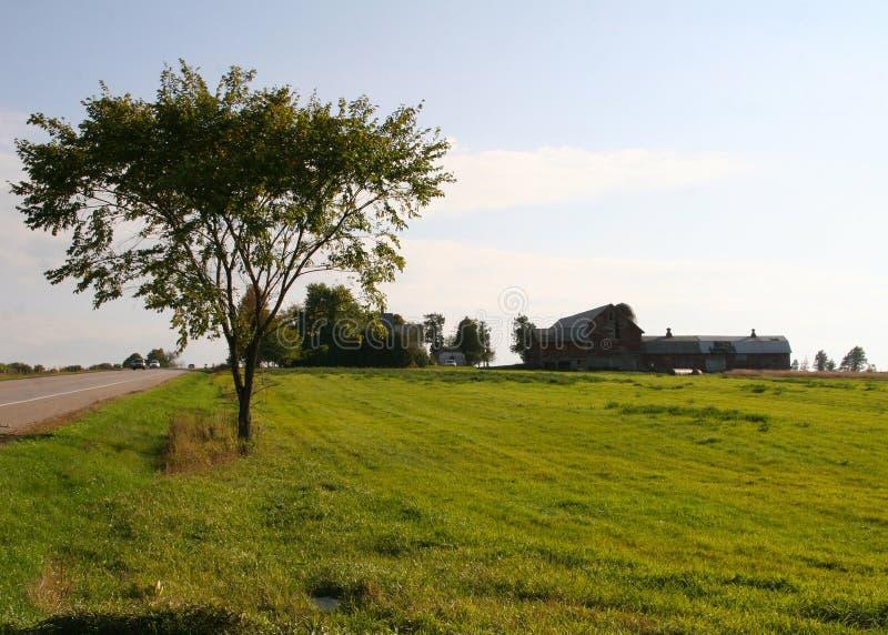 Lantgårdland av huvudvägen arkivbild