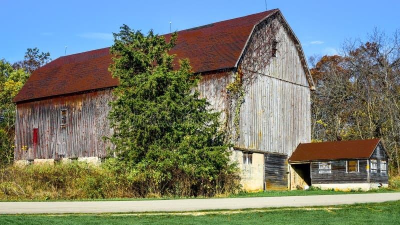 Lantlig brun ladugård under träd arkivfoton