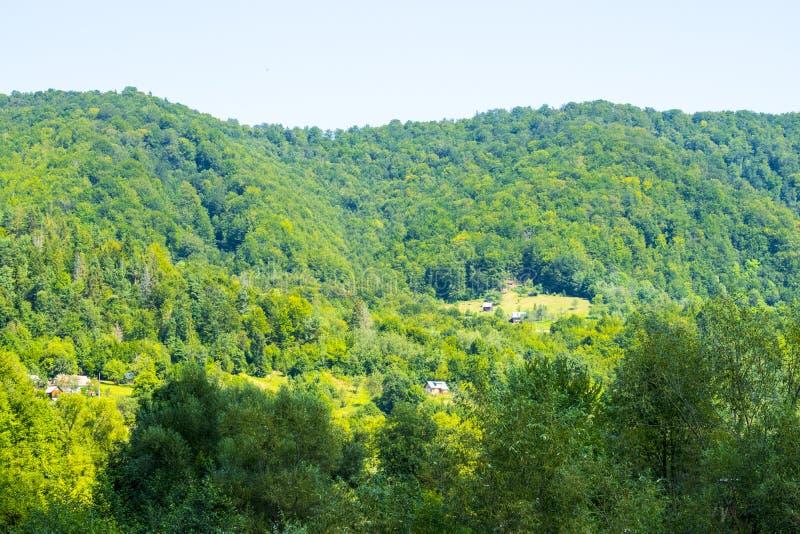 Lantlig egenskap i skogen arkivbilder