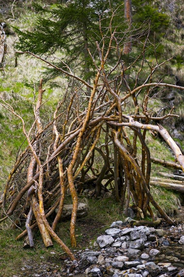 Lantlig filialliten utbyggnad bredvid lilla Forest Creek royaltyfri foto