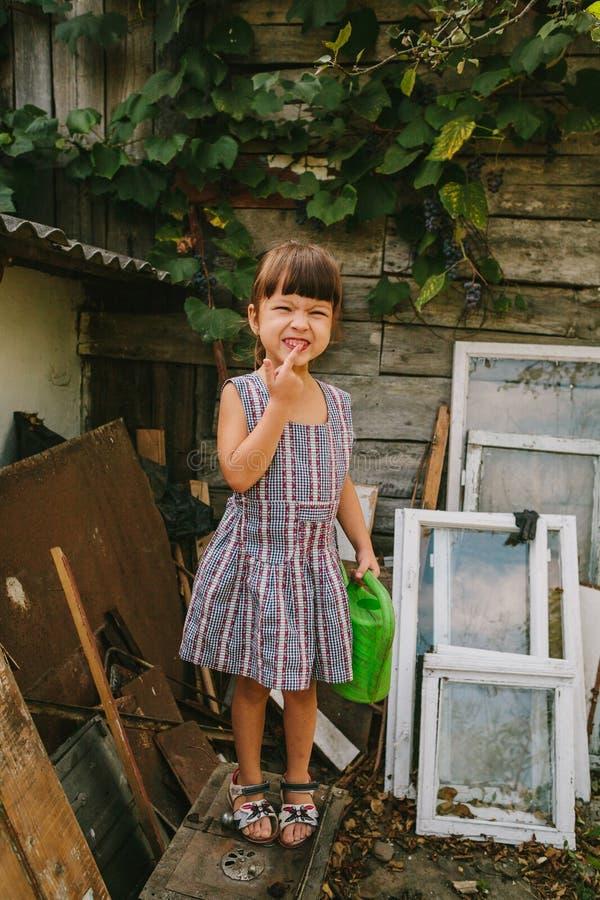 Lantlig flicka bland det gamla träavfallet royaltyfria foton