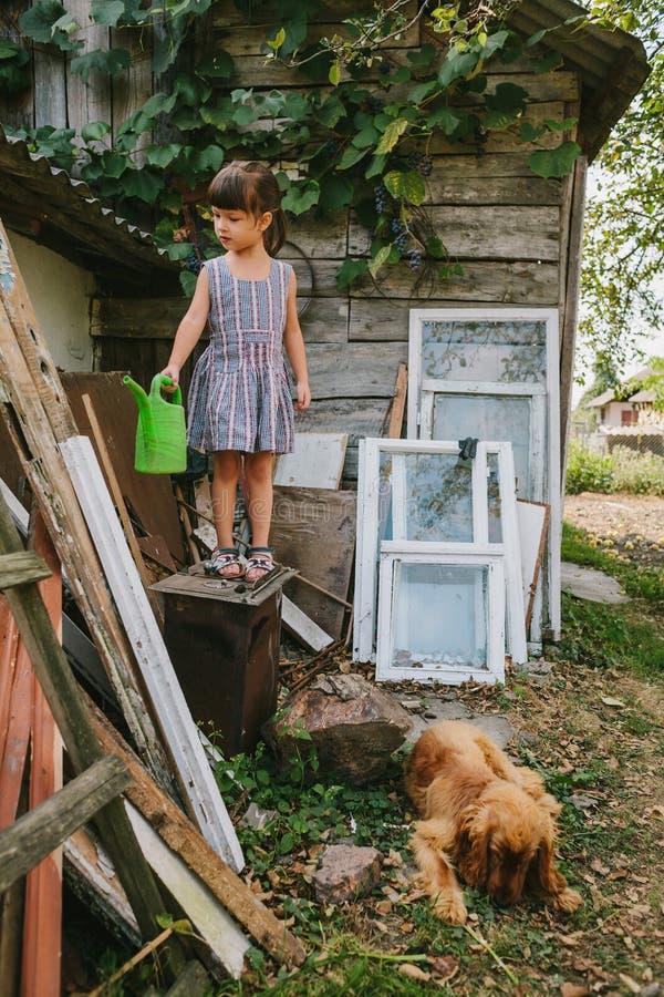 Lantlig flicka med hennes hund bland det gamla träavfallet fotografering för bildbyråer
