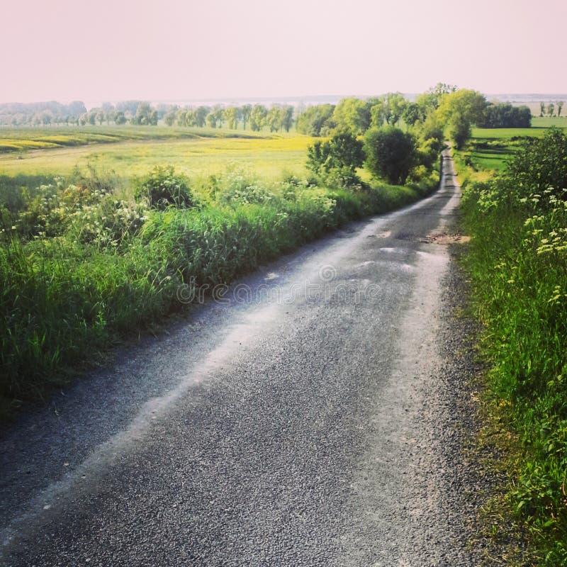 Lantlig grov asfaltbeläggningväg i Polen arkivbilder