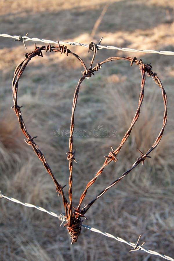 lantlig hjärta fotografering för bildbyråer