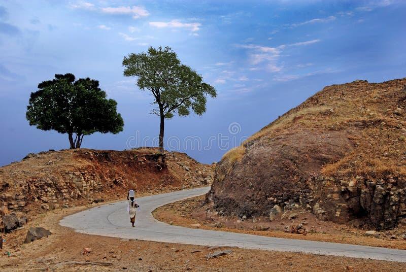 lantlig indisk livstid fotografering för bildbyråer
