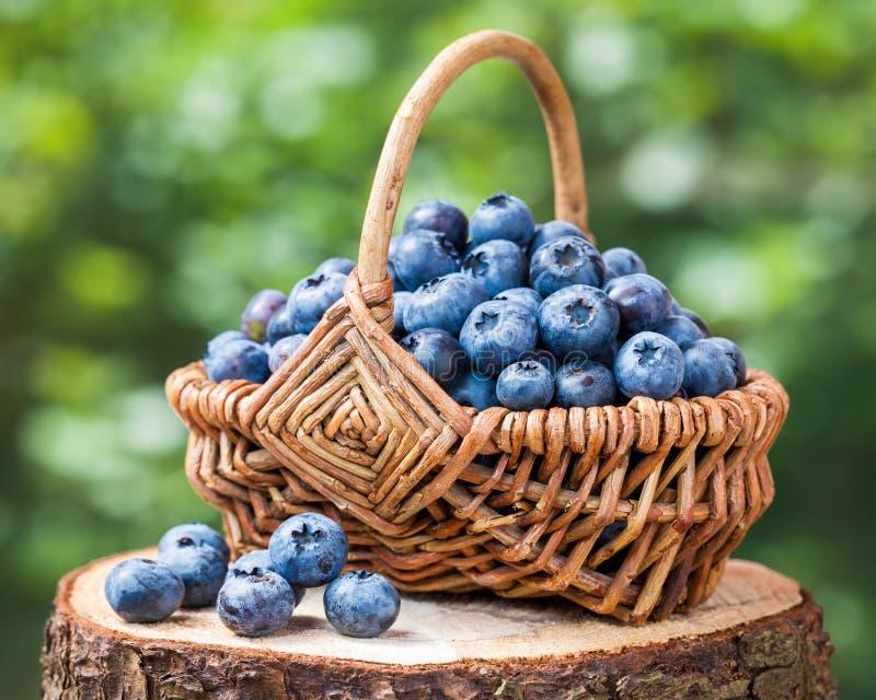 Lantlig korg med mogna blåbär arkivbild