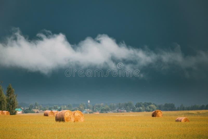 Lantlig landskapfältäng med Hay Bales During Harvest In Su royaltyfri bild