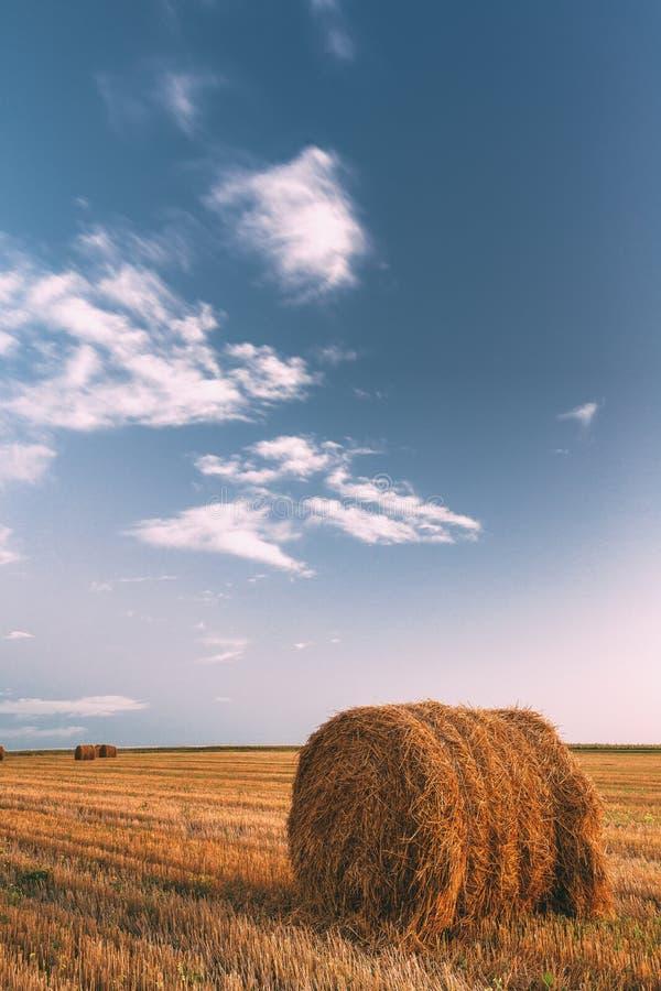 Lantlig landskapfältäng med Hay Bales After Harvest In Sunny Evening At Sunset arkivfoto