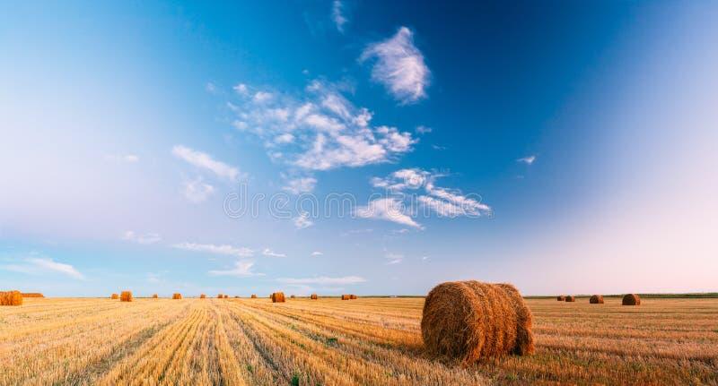 Lantlig landskapfältäng med soliga Hay Bales After Harvest In fotografering för bildbyråer