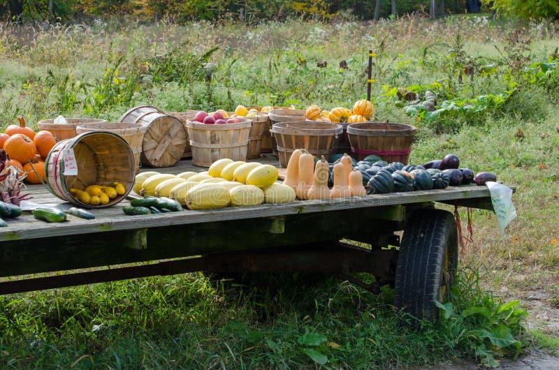 Lantlig lantgårdvagn royaltyfria bilder
