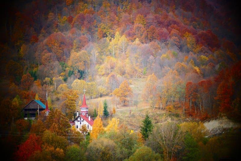 Lantlig ortodox kyrka som omges av skogen på en liten romanian by royaltyfria foton