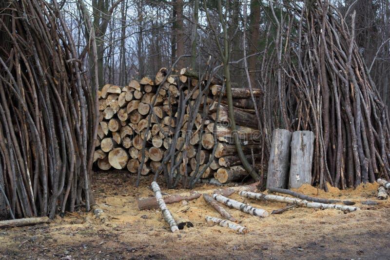 Lantlig sågverk- och skogsbrukbransch arkivfoton
