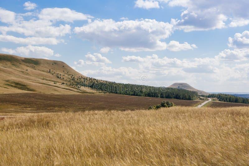 Lantlig sikt på fält och kullar fotografering för bildbyråer
