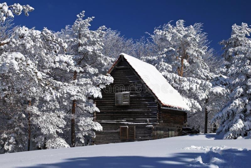 lantlig snow för hus fotografering för bildbyråer