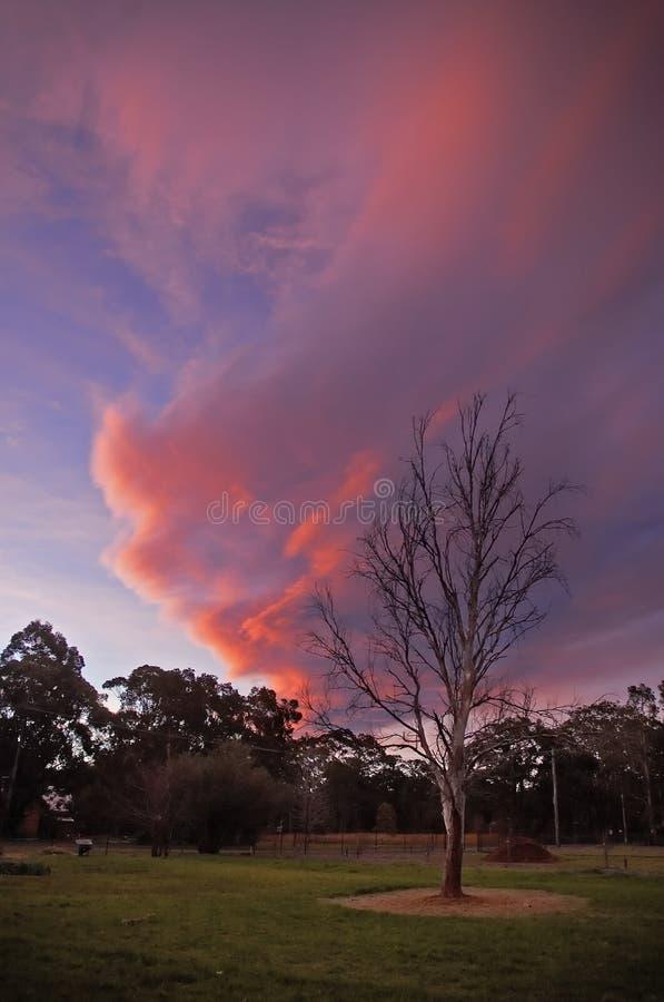 lantlig solnedgång fotografering för bildbyråer