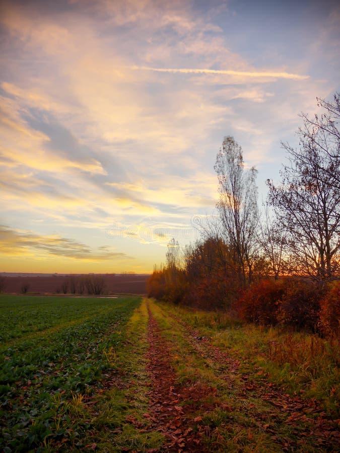 lantlig solnedgång för land arkivbild