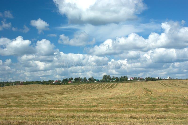 Lantlig sommarliggande med det mejade fältet en by arkivfoto