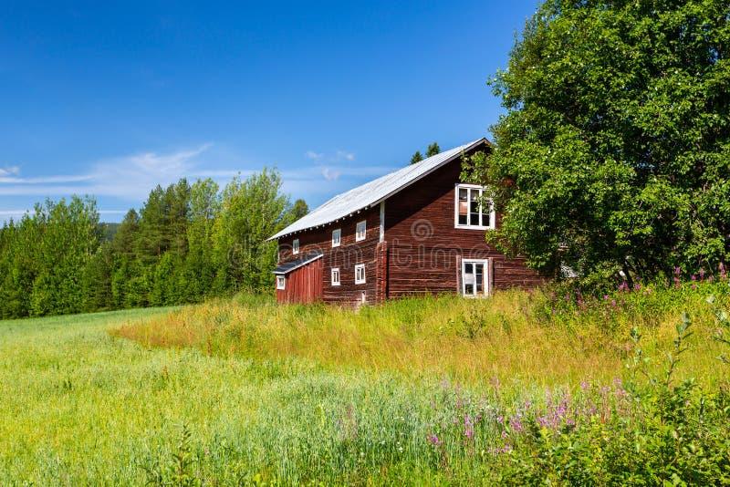 Lantlig sommarsikt för härlig svensk scandinavian av ett gammalt traditionellt rött lantligt trätimmerhus Grönt fält med träd och fotografering för bildbyråer