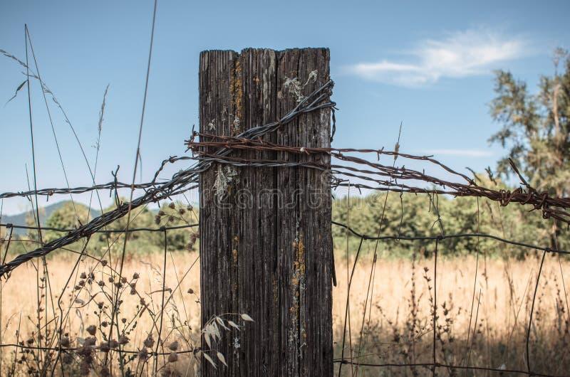 Lantlig staketstolpe fotografering för bildbyråer