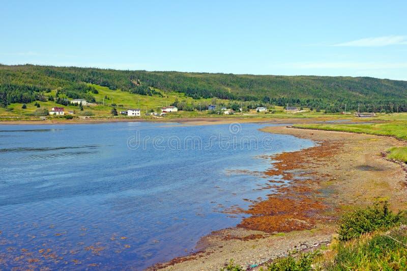 Lantlig town på kusten av Newfoundland arkivbild
