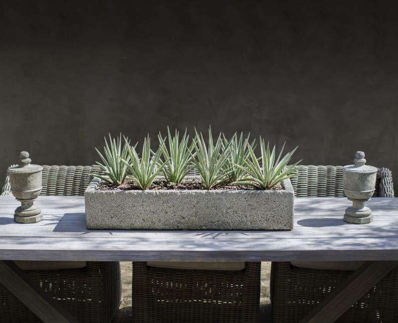 Lantlig trädgård som äter middag tabellskärmmöblemang arkivfoto