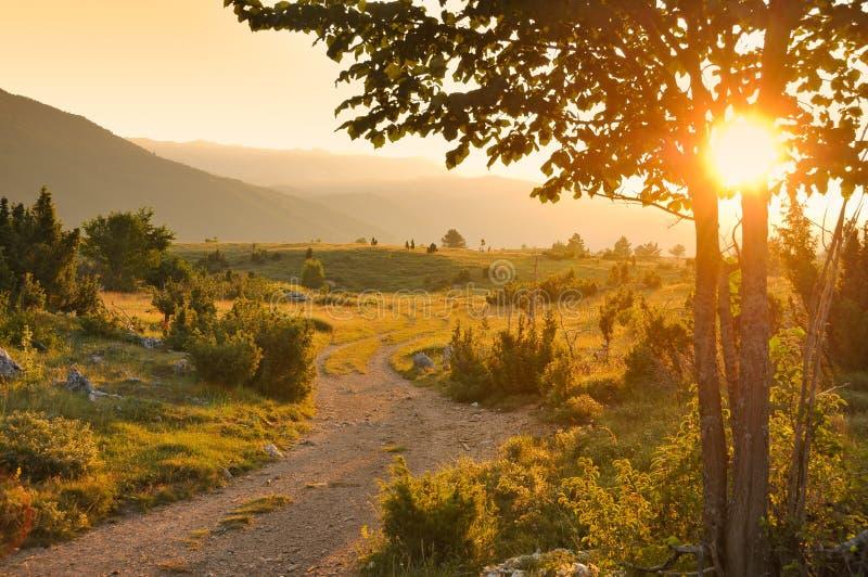 Lantlig väg på solnedgång fotografering för bildbyråer