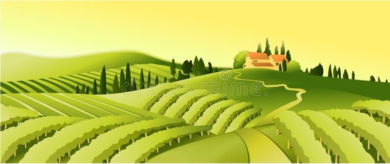 lantlig vingård för liggande stock illustrationer