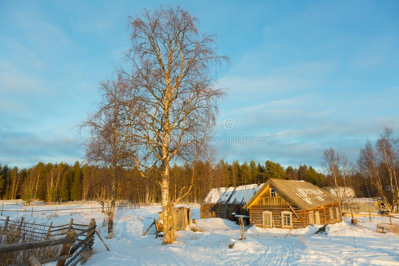 lantlig vinter för härlig liggande arkivfoton