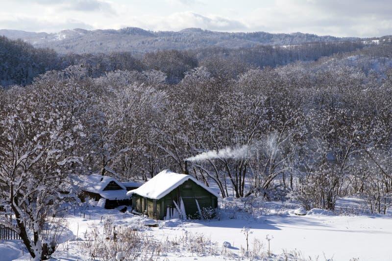 lantlig vinter för hus arkivfoto