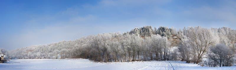 lantlig vinter för liggande royaltyfri fotografi