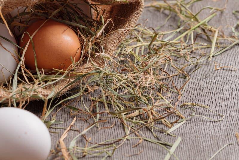 Lantliga ägg i jutepåse royaltyfri foto