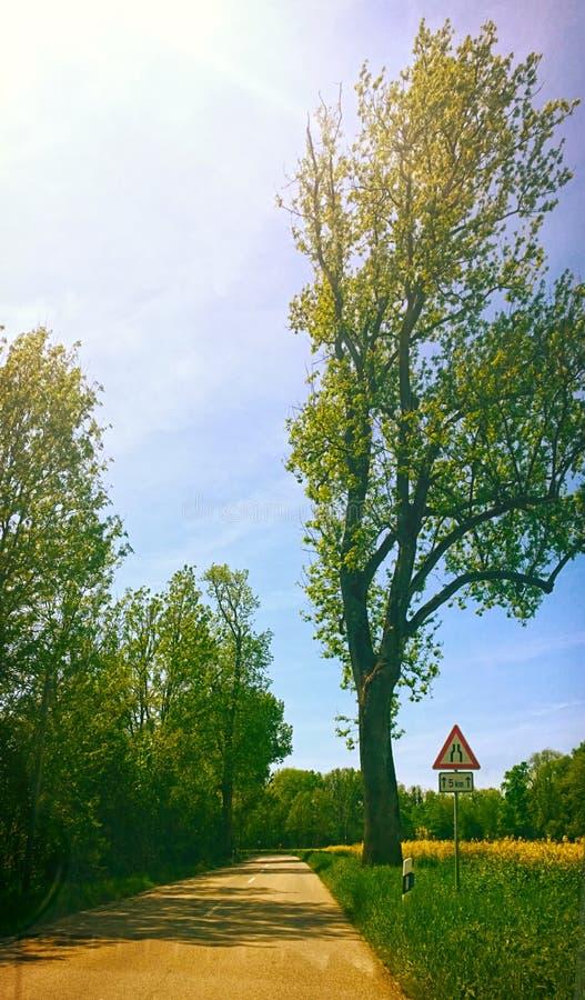 Lantliga Bayern, landsväg arkivfoto