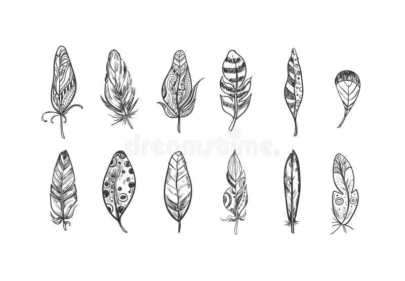 Lantliga etniska bohemiska stilfjädrar Dragen uppsättning för vektor hand Skissa illustrationen Stam- och dekorativa fjädrar för  royaltyfri illustrationer