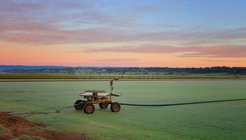 Lantliga jordbruksmarker som gryningavbrott royaltyfri foto