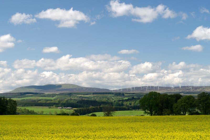 Lantliga landskap för vår royaltyfri fotografi