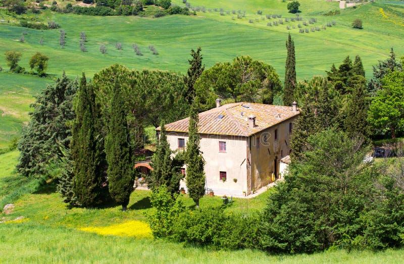 Lantliga Tuscan landskap fotografering för bildbyråer