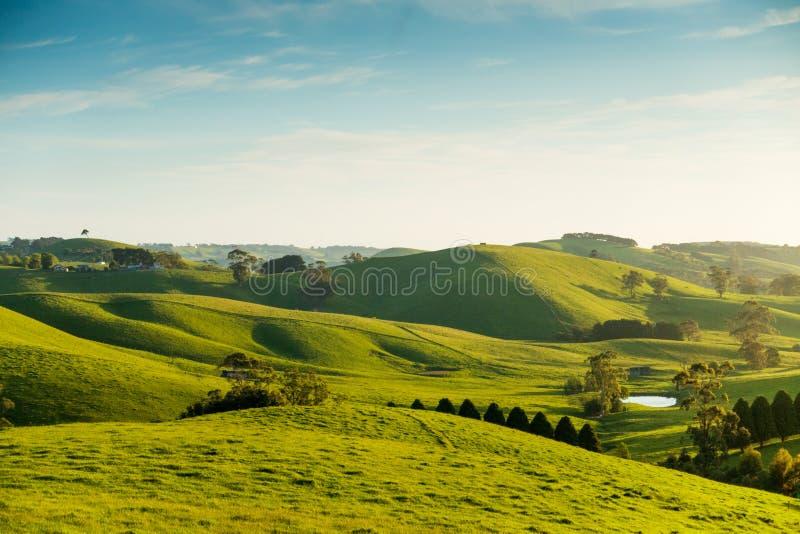 Lantligt Australien landskap arkivfoton