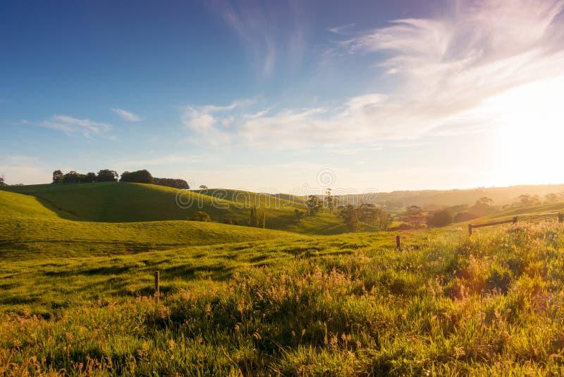 Lantligt Australien landskap royaltyfri fotografi