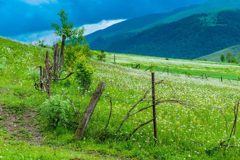 Lantligt autentiskt staket i ett grönt fält i de Kaukasus bergen royaltyfri bild