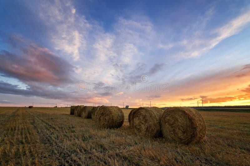 Lantligt fält för höstpanorama med snittgräs på solnedgången arkivfoton