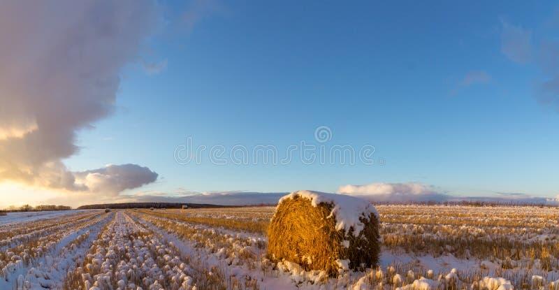 Lantligt fält med snittgräs och den första insnöade Ryssland, Ural arkivfoto