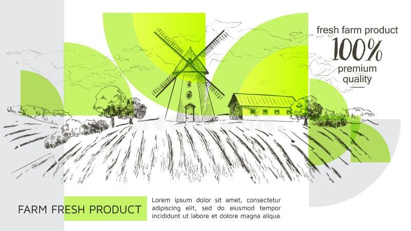 Lantligt holländskt landskap med väderkvarn- och vetefältet Ställ in av den traditionella väderkvarnen Bagerit shoppar, organiskt royaltyfri illustrationer
