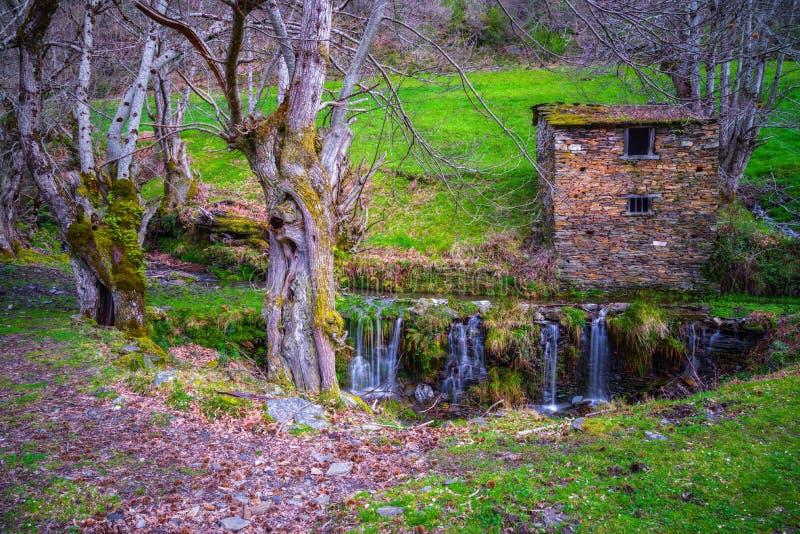 Lantligt hus med träd och vattenfallet arkivfoto