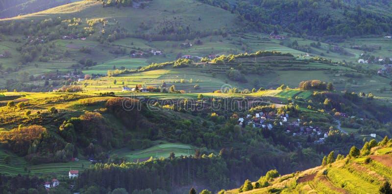 Lantligt kullelandskap för grön vår, Slovakien royaltyfri foto