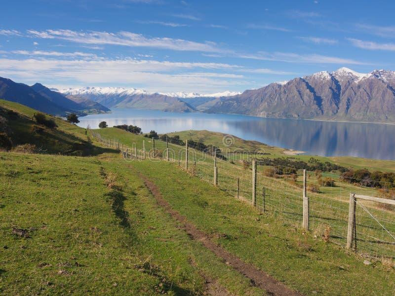Lantligt landskap av Nya Zeeland royaltyfri fotografi
