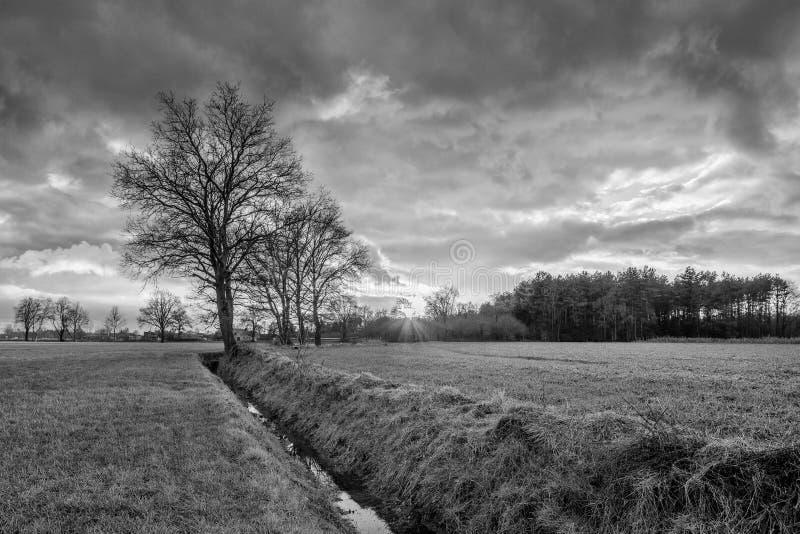 Lantligt landskap, fält med träd nära ett dike och färgrik solnedgång med dramatiska moln, Weelde, Belgien royaltyfria bilder
