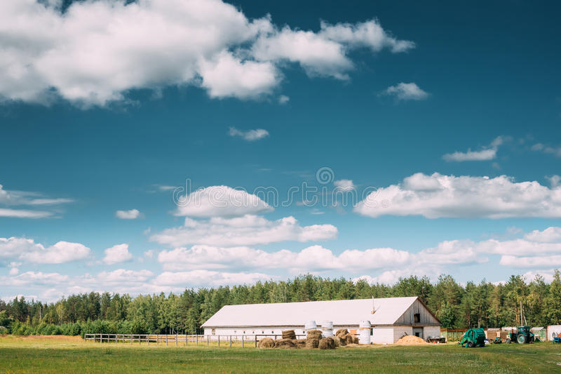 Lantligt landskap för bygd med lantgårdpaddocken för häst, skjul eller ladugård eller stall med höstackar i Latsommarsäsong royaltyfri foto