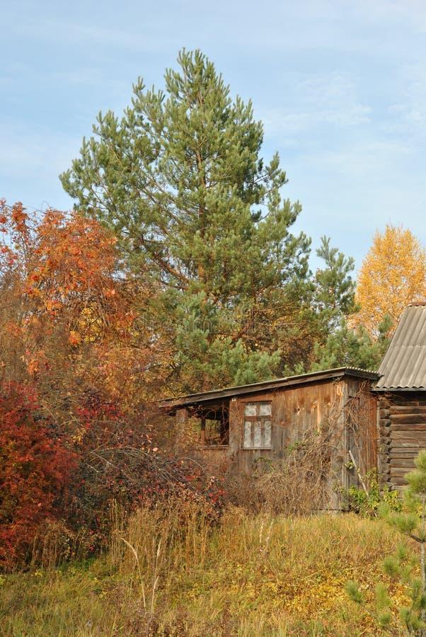 Download Lantligt Landskap För Höst: Litet Hus Under En Sörja Arkivfoto - Bild av russia, frodigt: 78728072