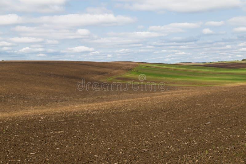 Lantligt landskap för jordbruks- vår, färgrika kullar arkivbilder